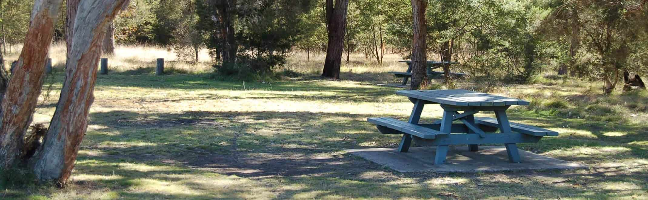 Hunter Valley picnic area